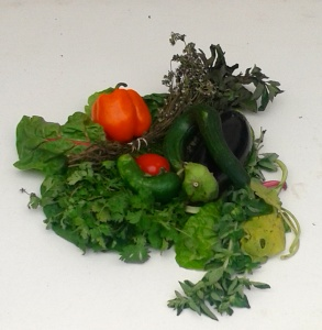 veg arrangement
